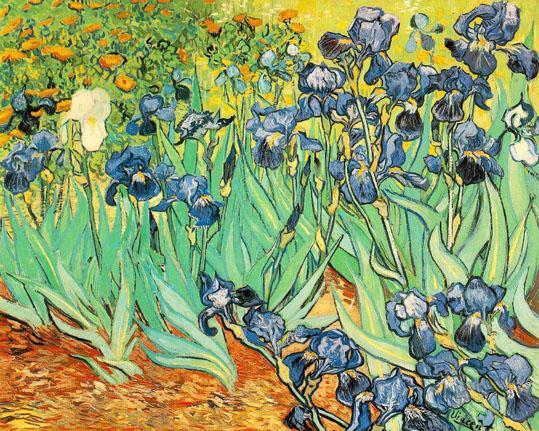 Irises,_1889,_Vincent_Van_Gogh.jpg